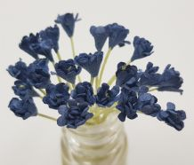 NAVY BLUE GYPSOPHILA / FORGET ME NOT (Single Layer) Mulberry Paper Flowers